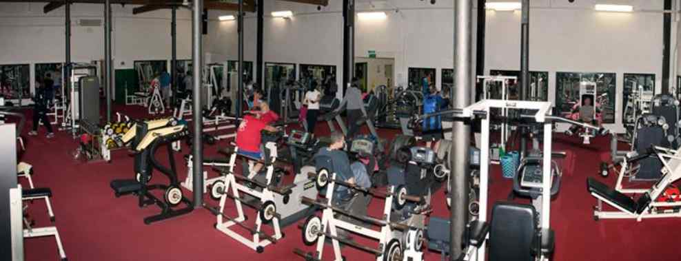 Palestra World Fitness Club